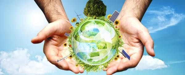 Créateur de produits bois Ecolabel et NF Jouets